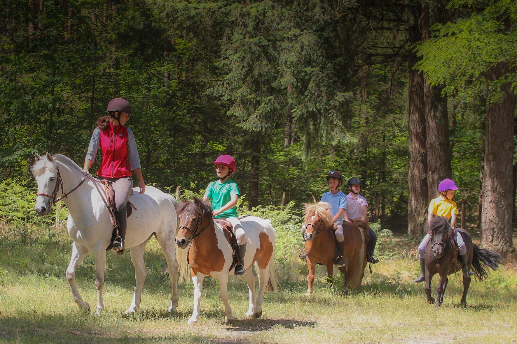 centre equestre haute loire